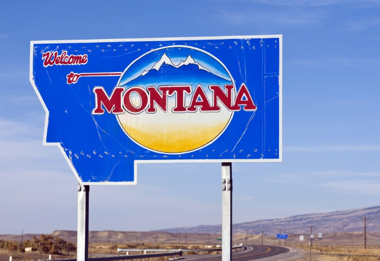 montana self-directed ira