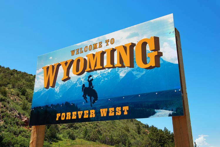 wyoming solo 401k