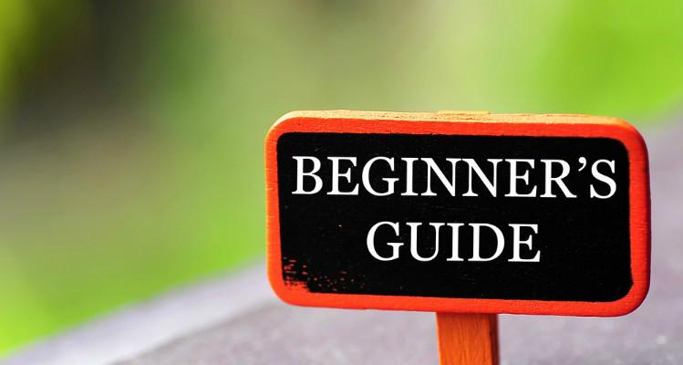 Beginner's guide to self-directed ira